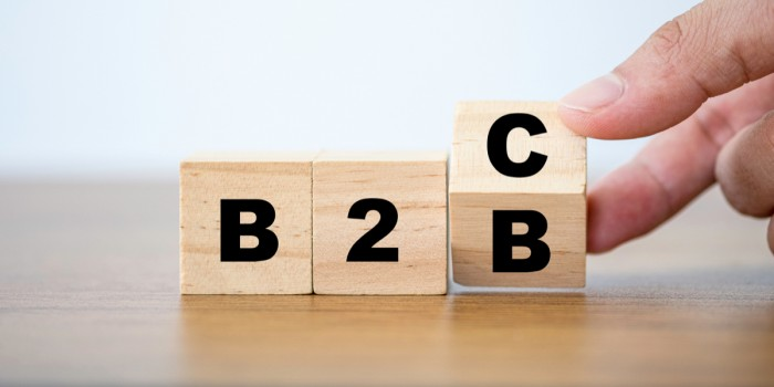 B2B & B2C Hybrid eCommerce: What is It? Why You Need It?