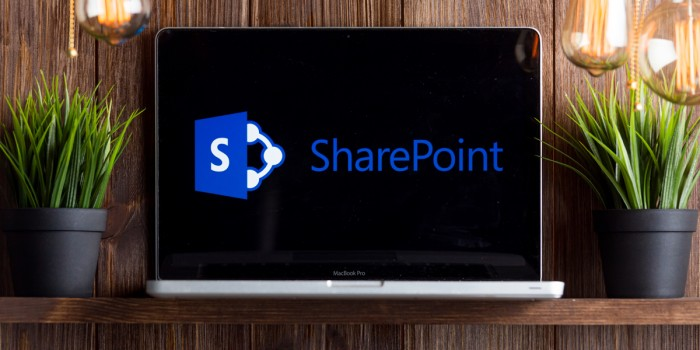 Everything You Need to Know About SharePoint