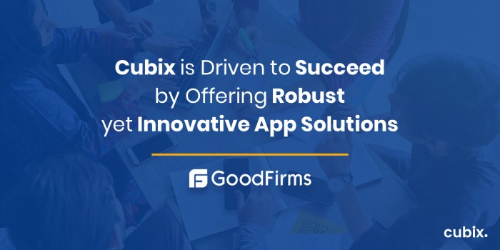 Cubix Is Driven to Succeed By Offering Robust yet Innovative App Solutions